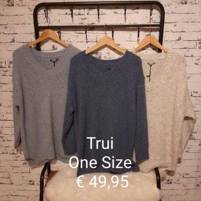 trui verschillende kleuren one size